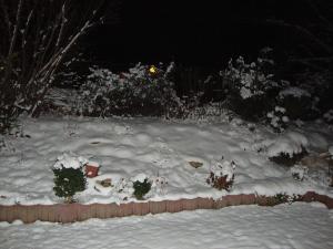 Experiment 23, Bild 1: Schnee im dunkeln
