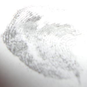 Experiment 30, Bild 3: Was sind Fingerabdrücke?