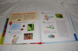"""Das Buch """"Mein Experimentierbuch Umwelt und Natur"""" aufgeschlagen"""