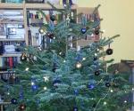 Der kleine Forscher - Weihnachtsbaum 2013